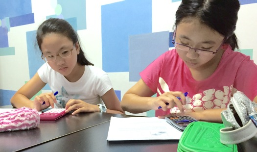 Focus and Concentration eduKate Tuition Centre Singapore Punggol Prive Tampines MOE SEAB PSLE Syllabus 2015 GCE O' levels English Maths and Science IB IP Programme Marina Bay UWCSEA